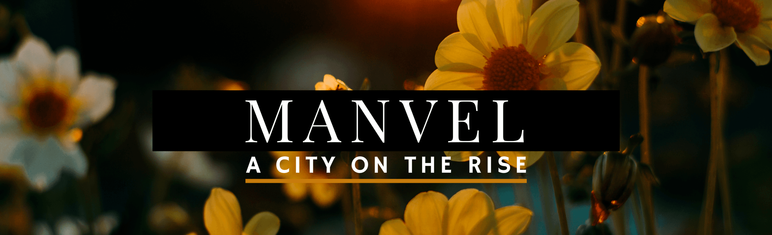 Manvel City on the Rise
